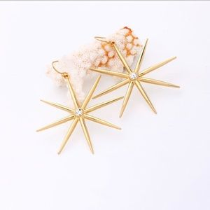 🌟🌟COMING SOON🌟🌟Gold Anise Star Earrings